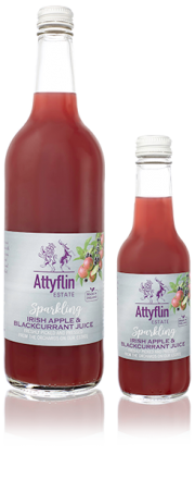 Sparkling Irish Apple & Blackcurrant Juice